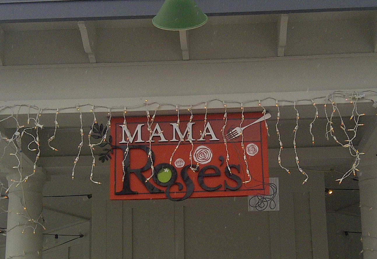 PANEL-Mama-Roses