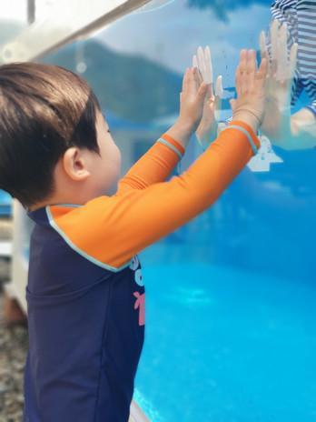 이동식 수영장 (컨테이너형)