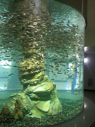 cylindrical tank