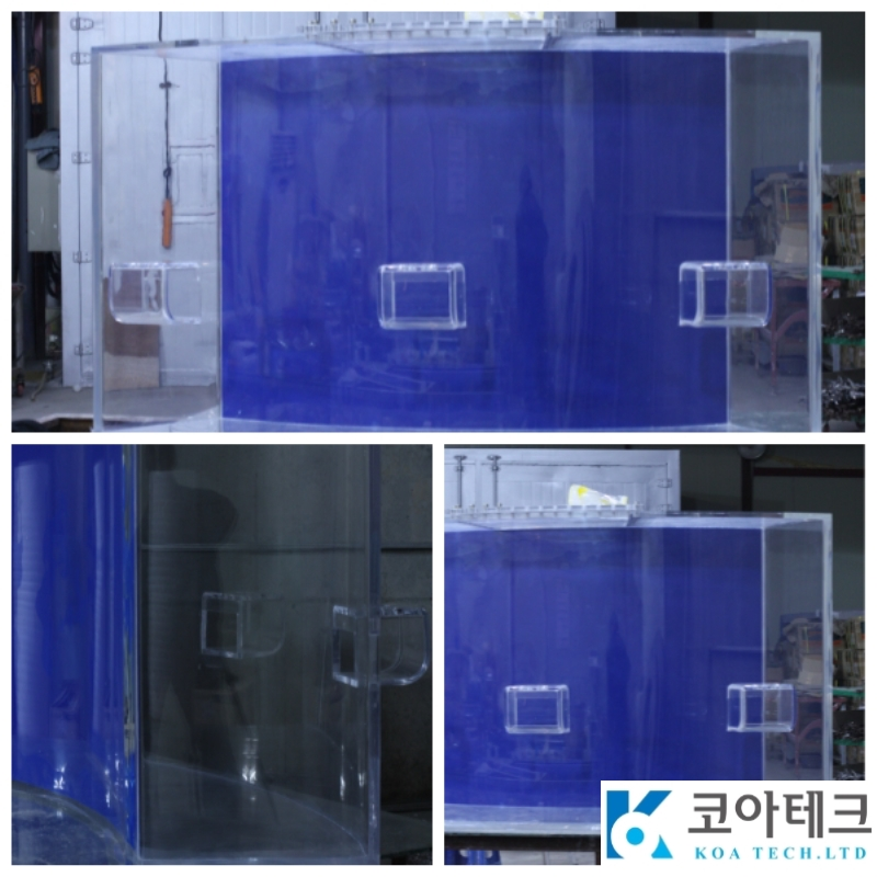 Doctor fish Tank