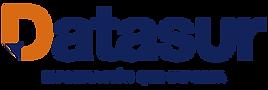 logo-datasur.png