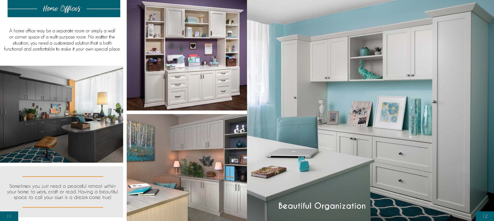 Home Office Cabinets & Design