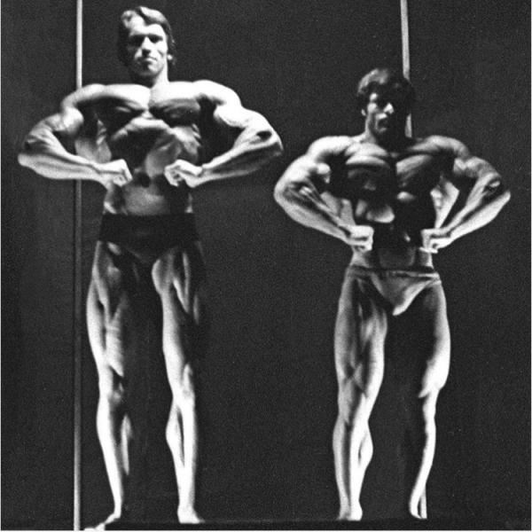 Columbu vs Schwarzenegger