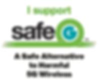 SafeG Logo.PNG