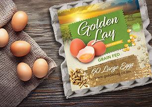 Golden Lay.jpg