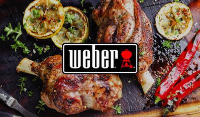 Weber Brochure