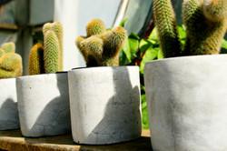 Decorative pots - momsgardenpassion