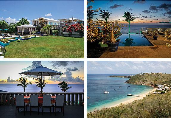 Pure_Anguilla3 copy2.jpeg