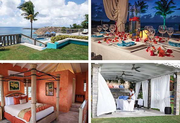 Pure_Anguilla3 copy.jpeg