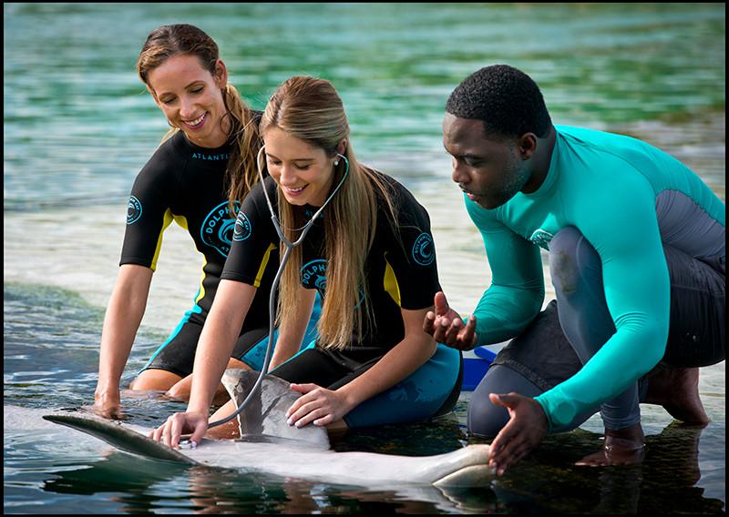 Photo Courtesy of Atlantis Paradise Island