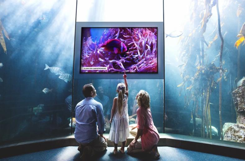 01-Studio-Screen-Entertainment-Aquarium.
