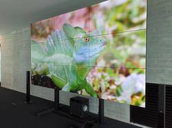 Philips Videowall Montage Burgau