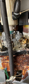 Regular scheduled maintenance on your ice maker can prevent all of this build up.