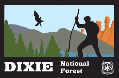Dixie National Forest Logo Design