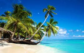 island-x-1000x628.jpg