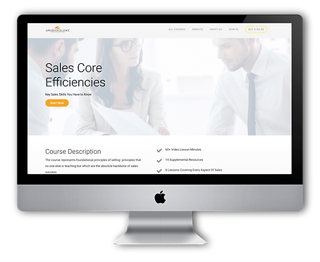 Sales Core Efficiencies - Online Training