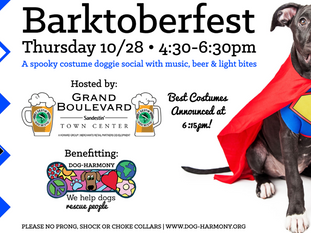 Dog-Harmony Presents the 6th Annual Barktoberfest on October 28th