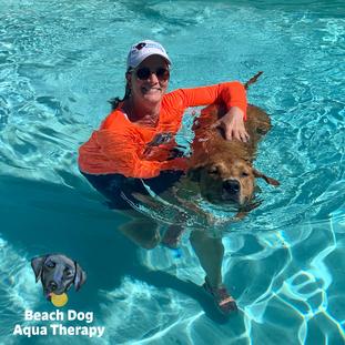 Beach Dog Aqua Therapy Hosts an Open House Benefitting Dog-Harmony