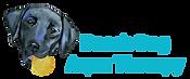 BDAT Logo 20204.png