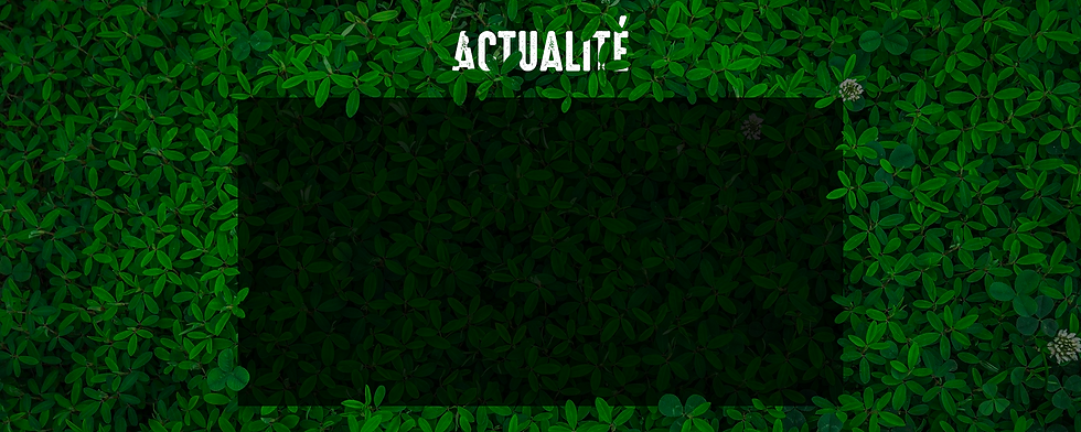 Bannière Actualité.png