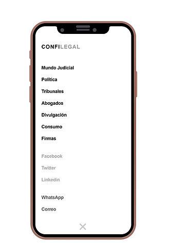 Confilegal_4.jpg