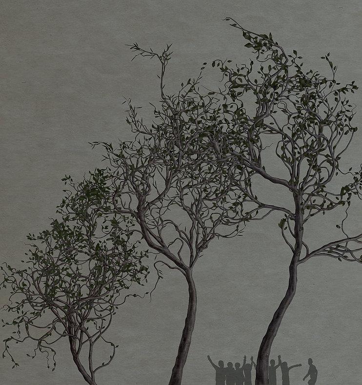 Trees on fog_.jpg