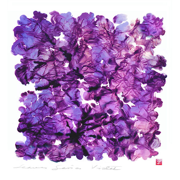 Violet 72.jpg