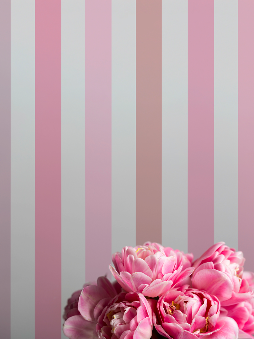 tonos-rosas.png