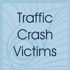 Traffic Crash Victims | Personal Injury Cases