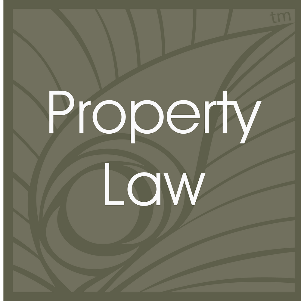 Kentucky and Florida Property Law Attorney