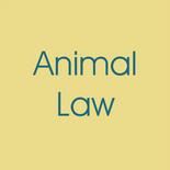 Attorney Maggie Jo Hilliard 2020-09.png