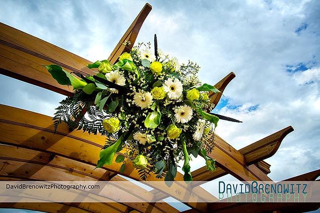 Wedding Reception Venues Denver Colorado Willow Ridge Manor