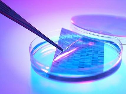 Les 5 points clés de la génomique en routine clinique
