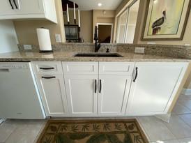 11. Kitchen Remodel on Sandy Creek Terrace, Bonita Springs
