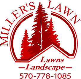 Miller's Lawn.png