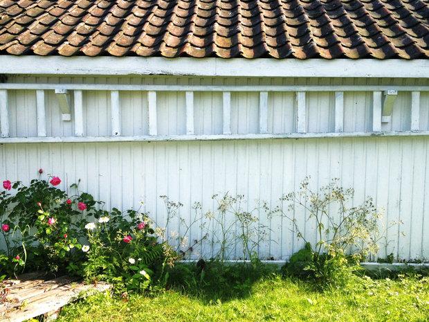 Vakker gammel stige nevlunghavn godbiter og margot 161.jpg