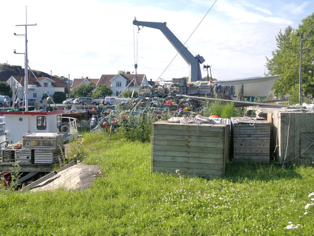 Krana i Nevlunghavn.