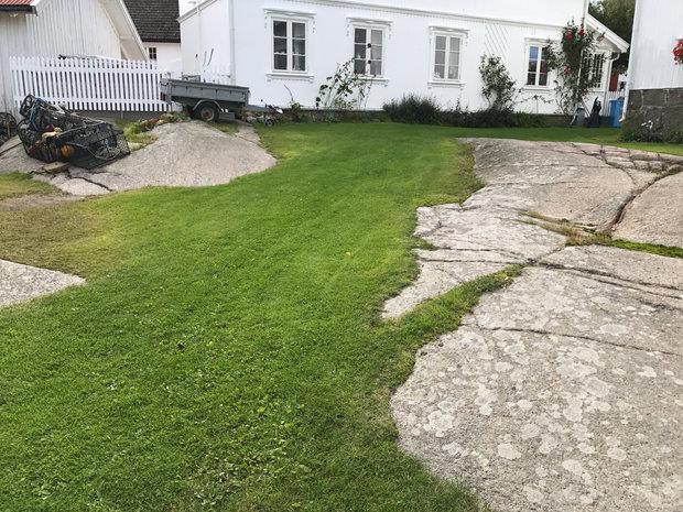 gress og svaberg i Nevlunghavn