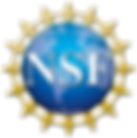 NSF_LOGO_NO_BACKGROUND.png