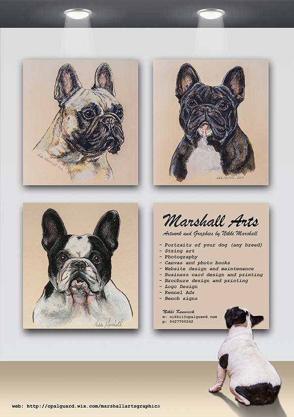 Marshall Arts advert for print