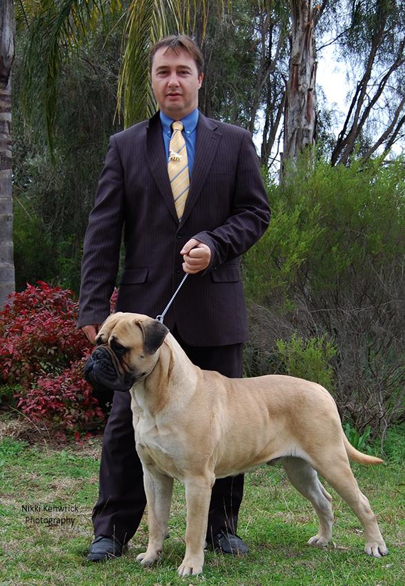 Aust Ch Opalguard Robbie