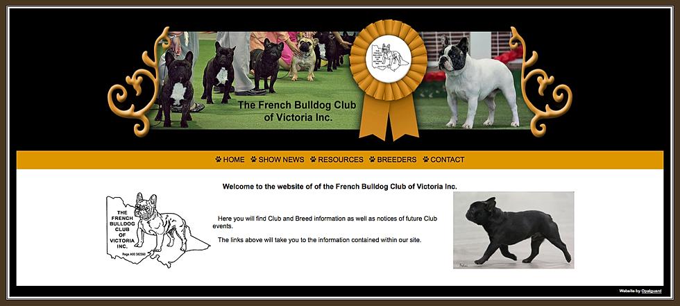 French bulldog club of victoria inc