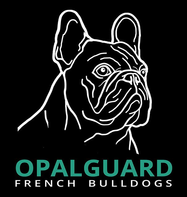 Opalguard Logo