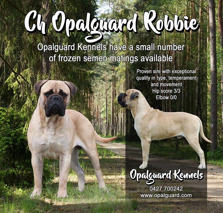 Opalguard Kennel Ad