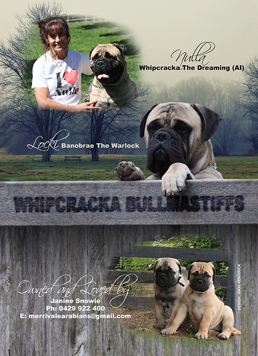 Whipcracka Kennel Ad