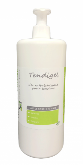 Alliance Tendigel Gel à l'Arnica & huiles essentielles