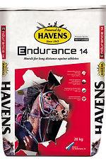 endurance14.jpg
