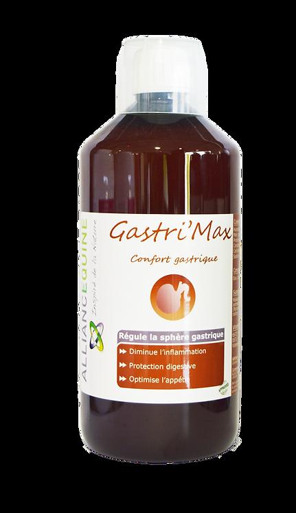 Gastri'Max Confort de l'estomac gel