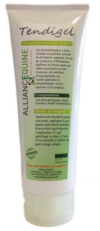 Alliance Tendigel Gel Arnica & huiles essentielles