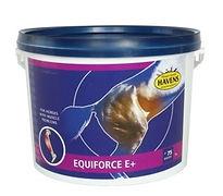 Equiforce E.jpg